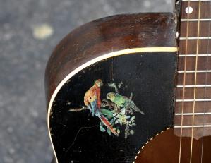 santa_cruz_guitar