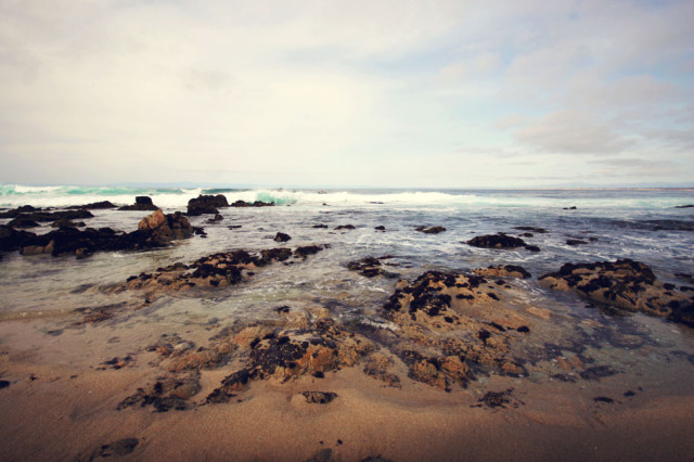 blog-luvpt_7994