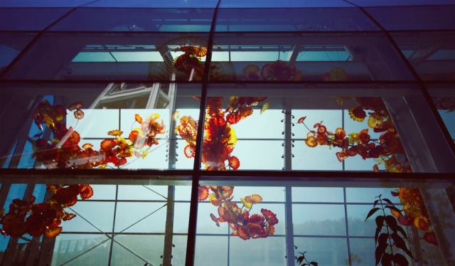 chihuly-16