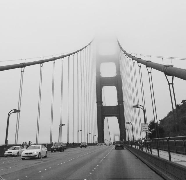 bridge-2846