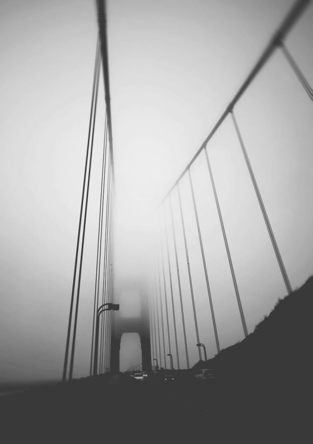 bridge-6817