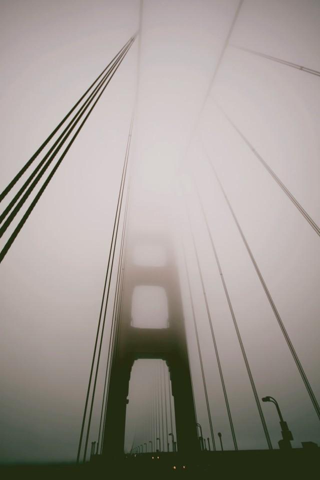 bridge-6832
