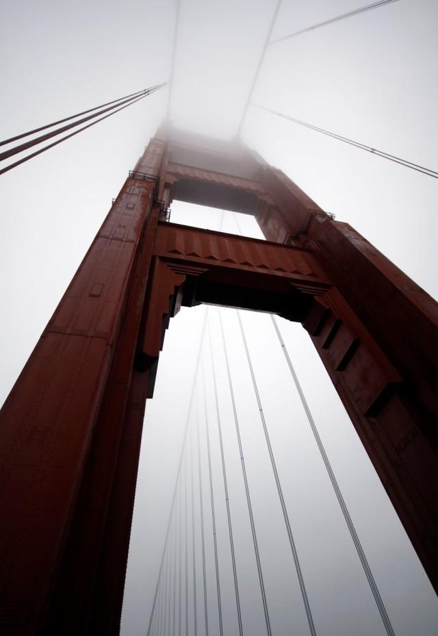 bridge-6844