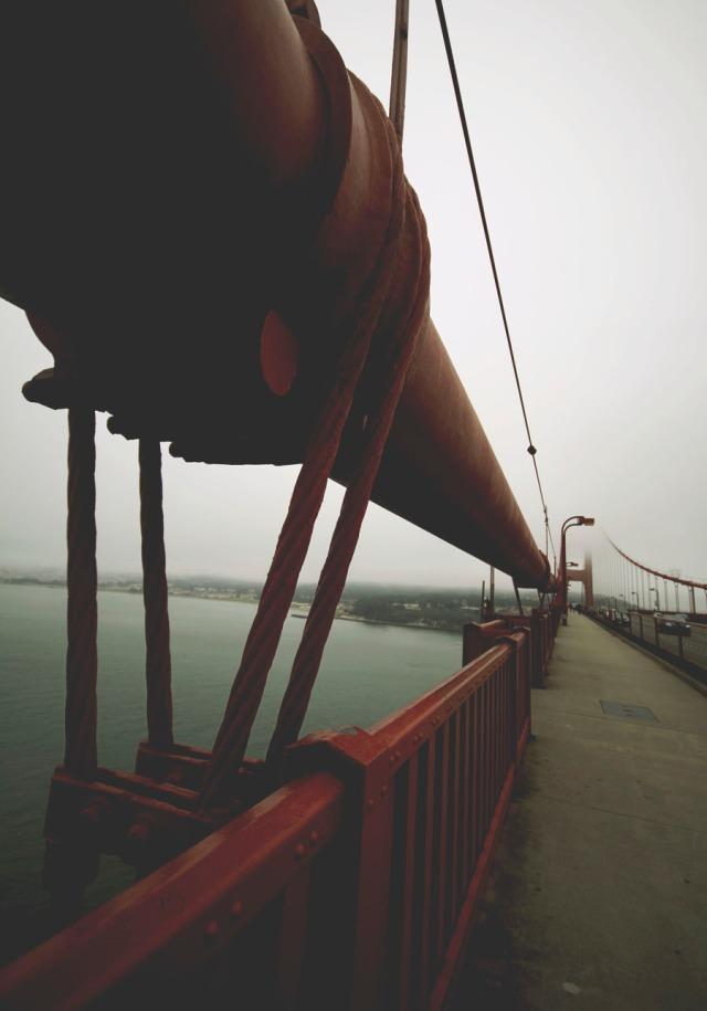bridge-6887
