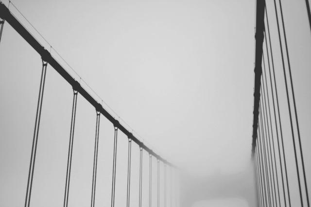 bridge-6938