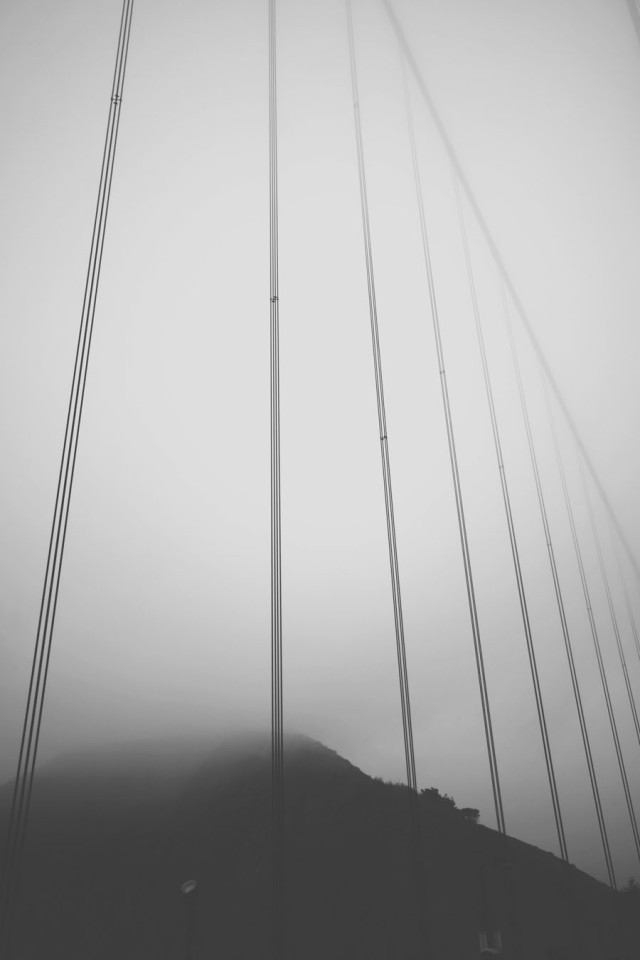 bridge_6848
