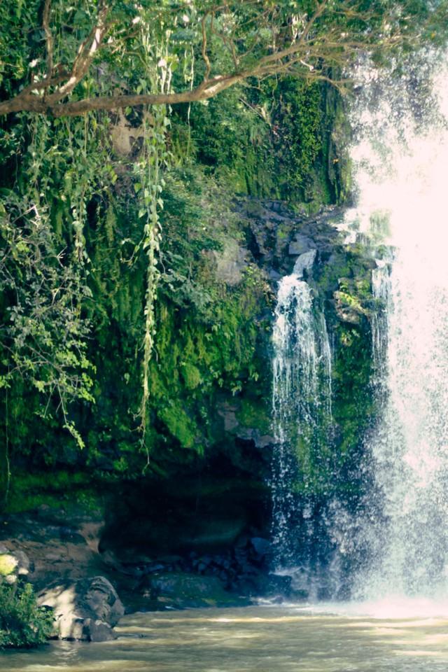 falls_8849