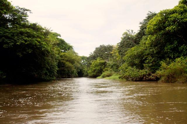 river_7621