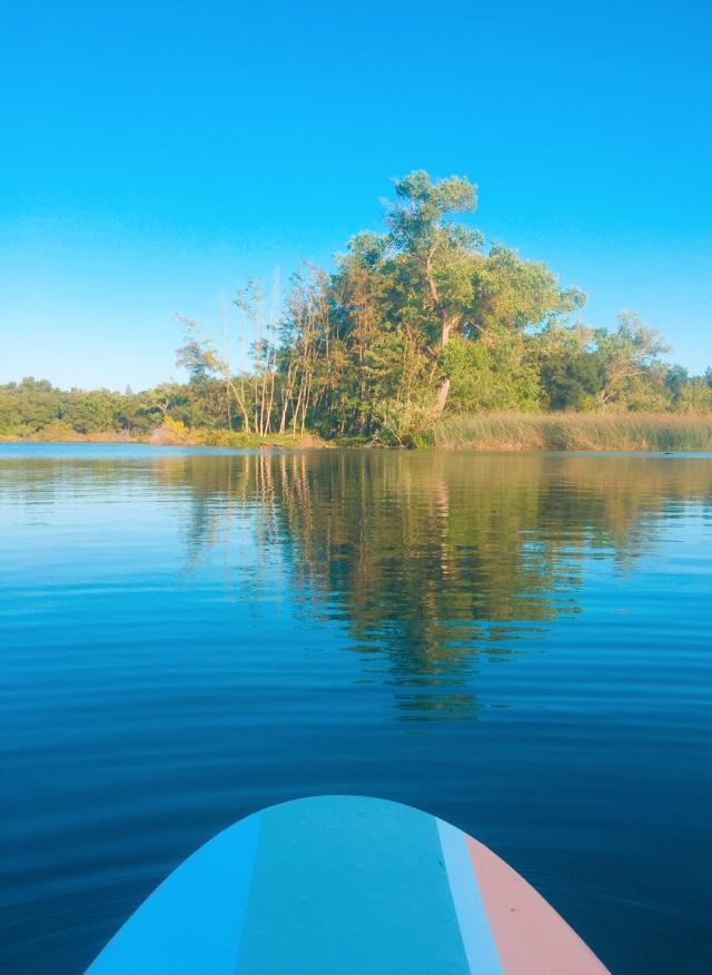 paddle_6